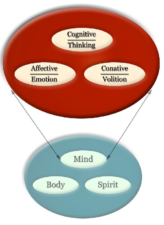 human emotions and cognition essay One emotion inspired our greatest achievements in science  the second is cognitive: if wonder is found in all human beings and higher primates.